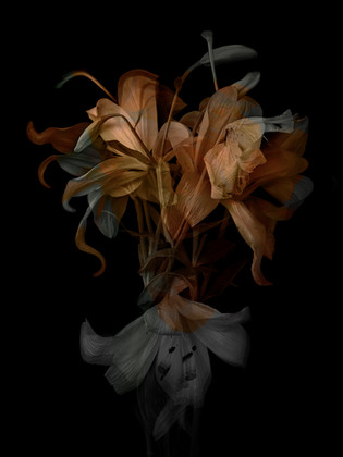 [DE]FLOWERED // Precious #3