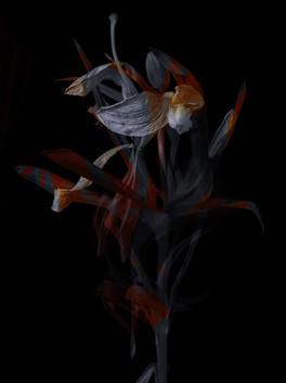 [DE]FLOWERED // Precious #7