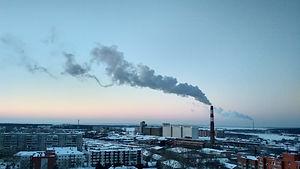 Carbon Reporting.jpg