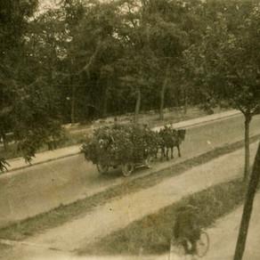 25 août 1944 : la Libération de Bonneuil