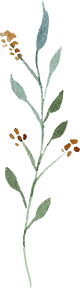 greenery-clipart-036.png