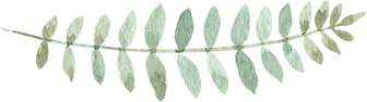 greenery-clipart-019_edited.png