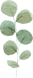 greenery-clipart-023.png