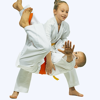 Classic Japanese Martial Arts for Everyone