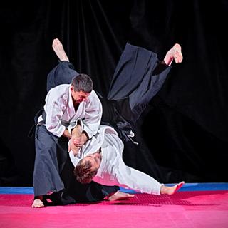 Traditional Japanese Jujutsu