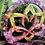 Orgonite Flor de Lótus Quartzo rosa, Ametista, Cornalina