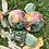 Orgonite Porta copos Redondo kit com 2 Quartzo verde