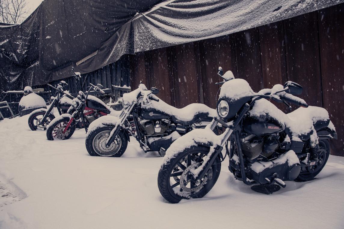 1 vinterdag dag 13 Oslo-2646.jpg