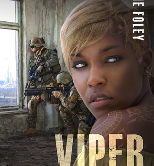 Book Review: VIPER by Jamie Foley