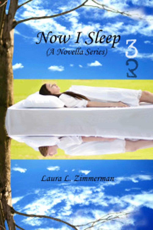NowISleep3-Reflection