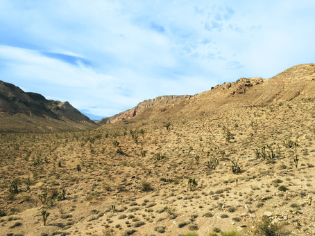 Our Journey through the Desert and Back Again