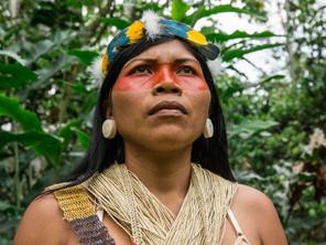 Nemonte Nenquimo: l'eroina dell'ambiente