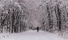 ridge-road-2015-01-11.jpg