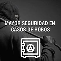 SEGURIDAD ROBOS@4x.png