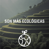 ECOLOGICAS@4x.png