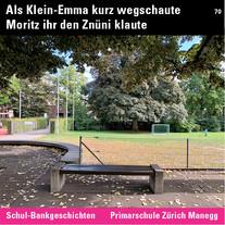 MR_Inst_70_SchBa_Zürich Manegg.jpg