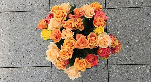 Blumen_IMG_9497.jpg