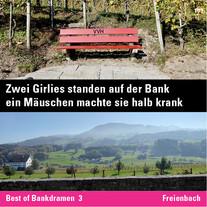 MR_Inst_101_BanDra_Freienbach.jpg