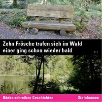 MR_Inst_51_Steinhauserwald.jpg