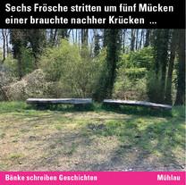 MR_Inst_55 Mühlau.jpg