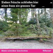 MR_Inst_54 Rifferswil.jpg