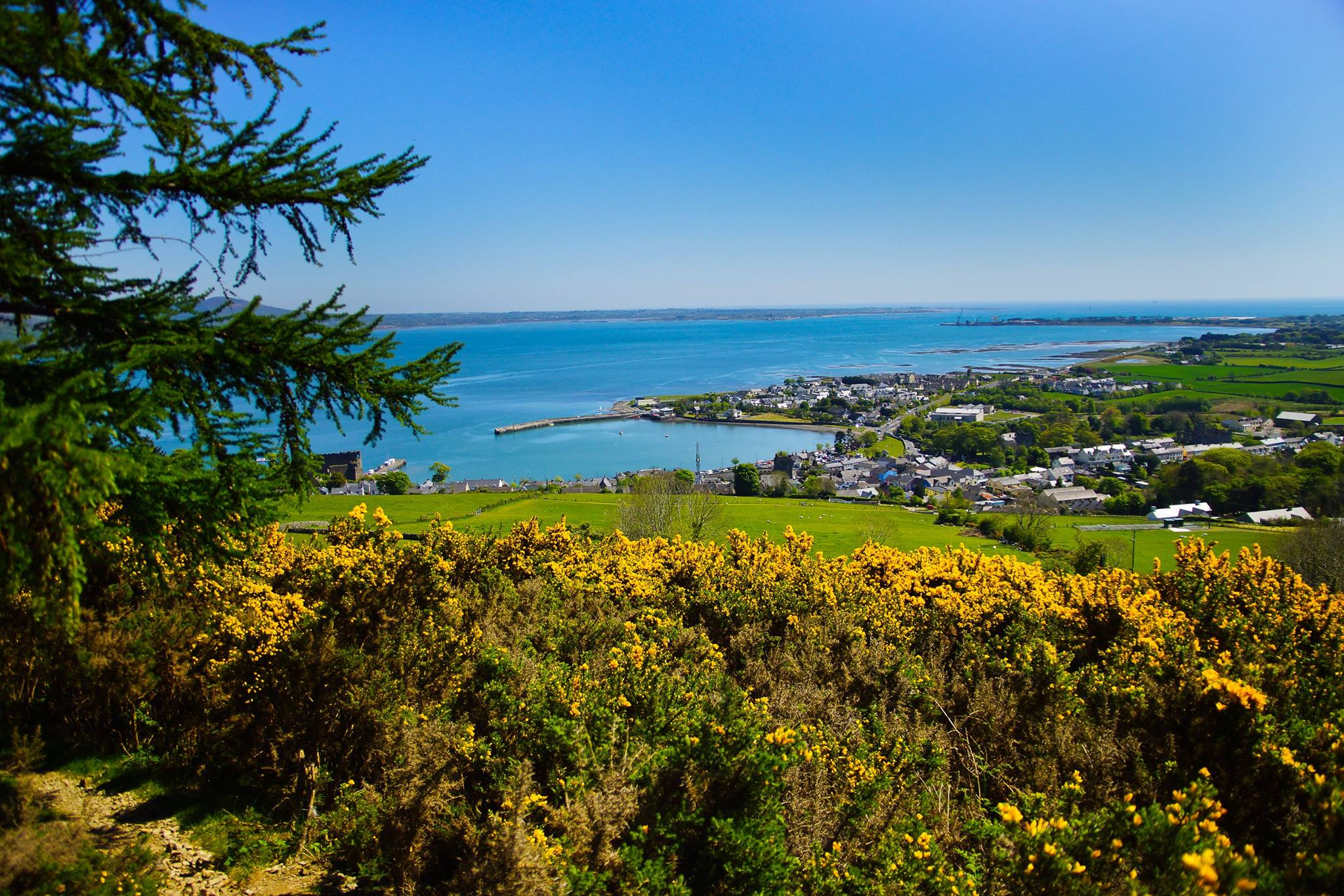 Late Spring in Carlingford, Co, Louth