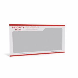 Priority mail window envelope