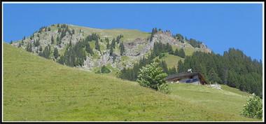 Alpes_jaun-1.jpg