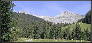 Alpes_ciernes-1.jpg