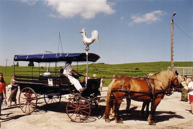 Coq de Malpas F promené en calèche dans le village, selon une vieille tradition qui se perd, hélas.