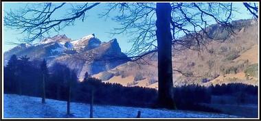 Alpes_Grandvilard-02.jpg