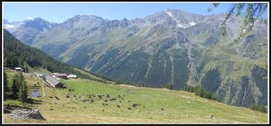 Alpes_mandelon-01.jpg