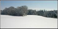 jorat_neige3.jpg
