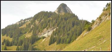 Alpes_grosmont-01.jpg
