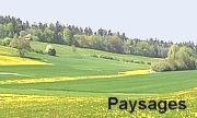 Paysages.jpg