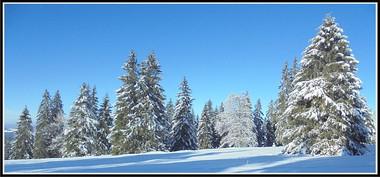 S-jura_neige-1.jpg
