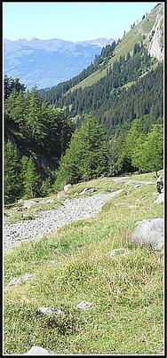 Alpes_solalex-2.jpg