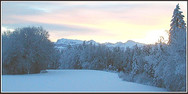 jorat_neige4.jpg
