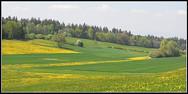 paysage3.jpg