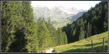 Alpes_pierreuse-2.JPG