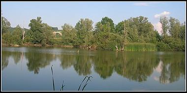 chavornay9_0.jpg