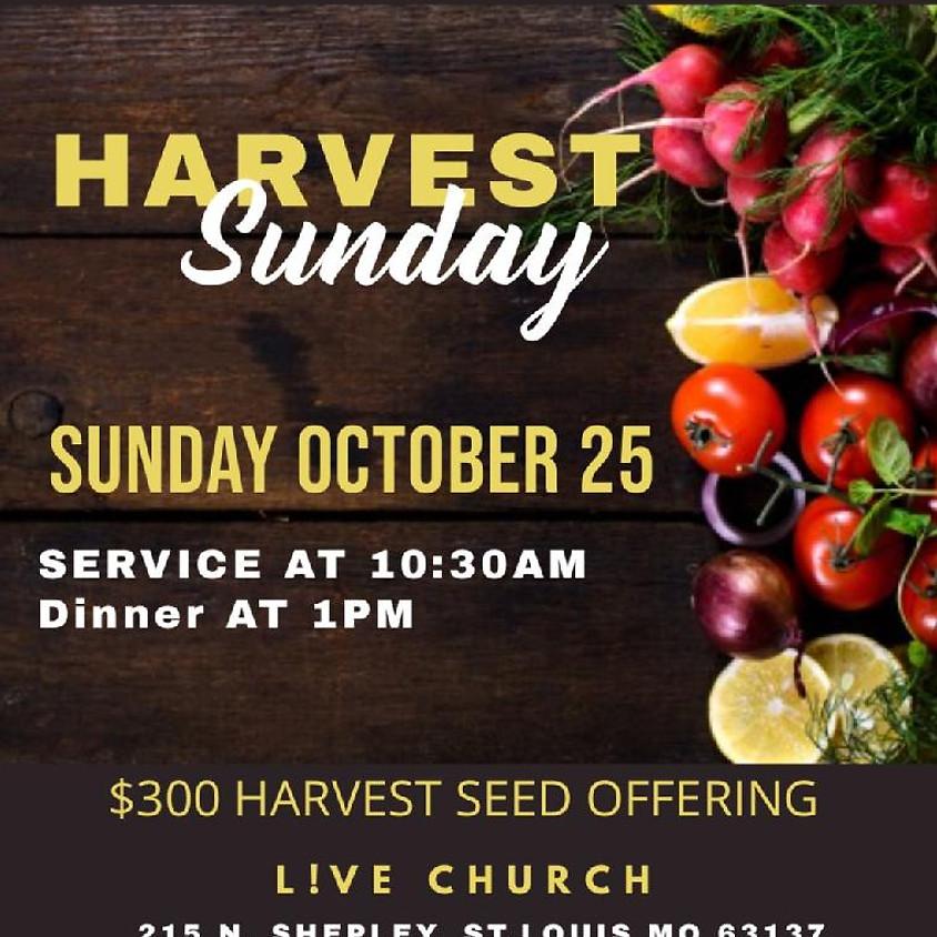 Harvest Sunday Dinner