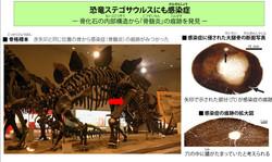 ステゴサウルスの感染症