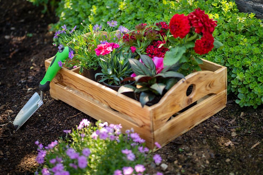 Gartenarbeit als Bild für Veränderungsmanagement, Andrea Kron von kronkonsult aktiviert Ihre Ressourcen