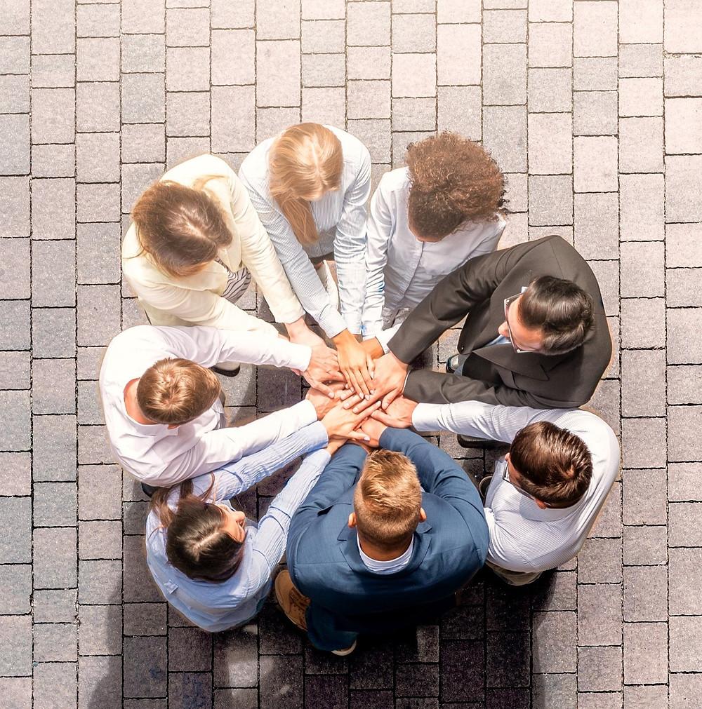 Online Teamentwicklung mit Andrea Kron von kronkonsult