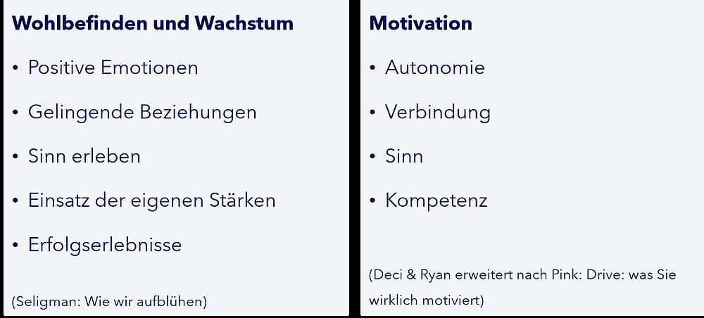 Mapping des PERMA-Modells zu Motivation nach Deci & Ryan
