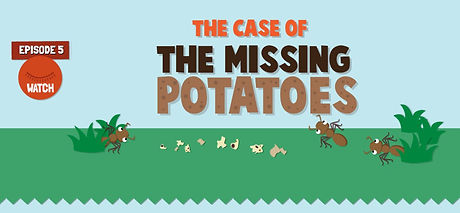 The case of missing potatoes.JPG