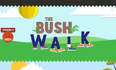 The Bush Walk.JPG
