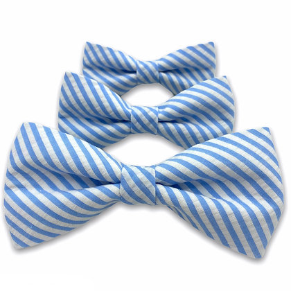 Light Blue Seersucker Dog Bow Tie