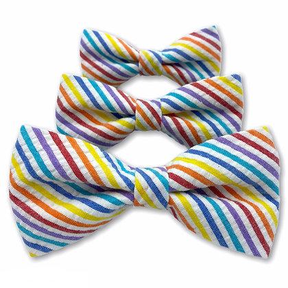 Rainbow Seersucker Dog Bow Tie